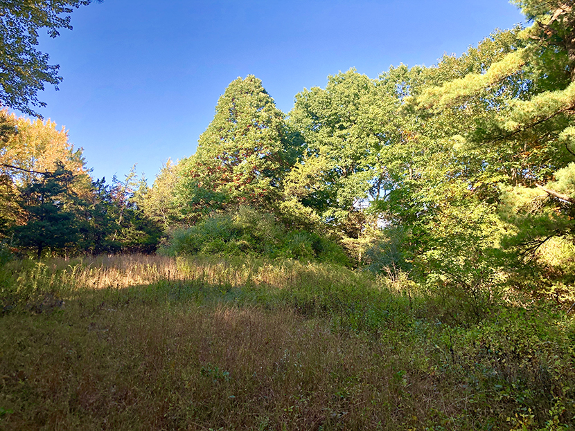 Secluded Livingston Parcel