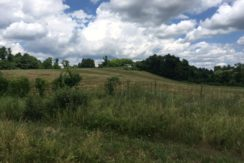 hegeman-view-from-road-of-land