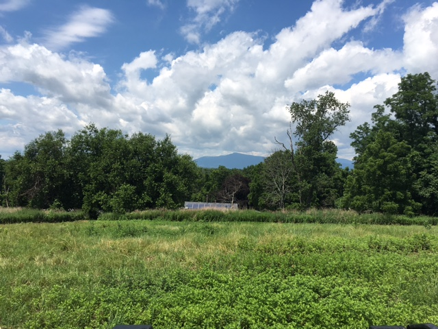 Clermont Country Property