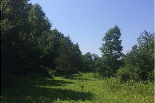 Germantown 20 Acre Parcel