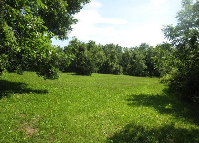Berlt Hidden field summer