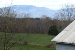 Berlt Mtn View 2