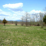 Clermont 49.5 acres reale state