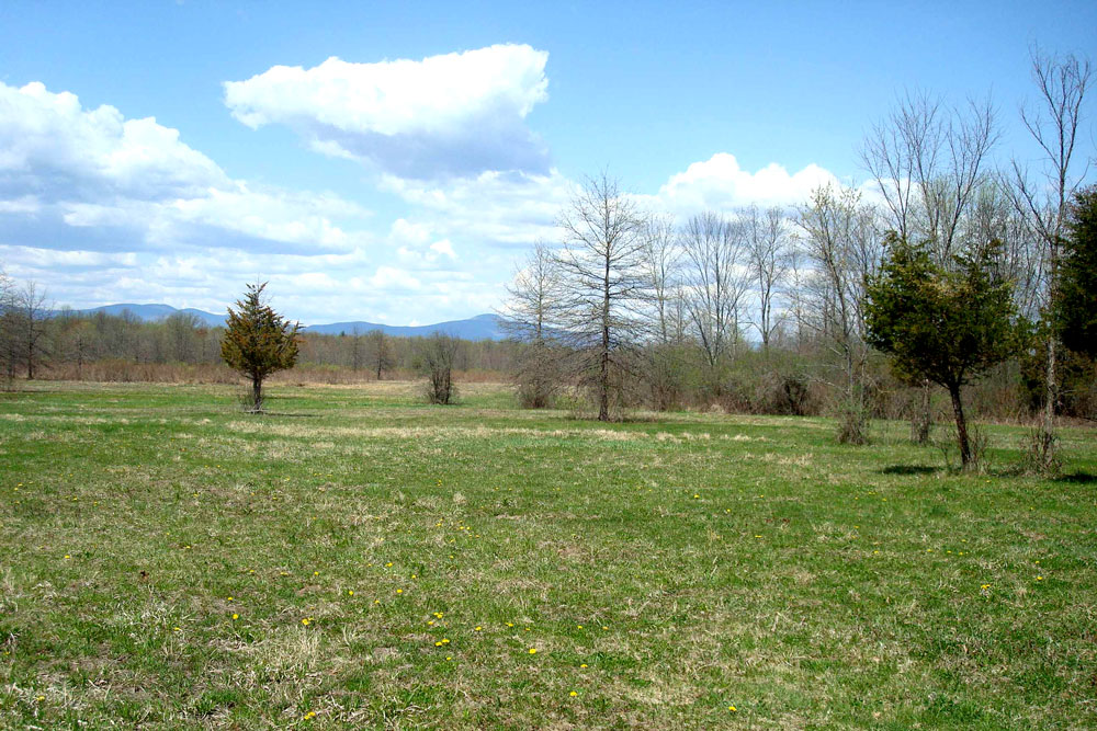 Clermont: 49 Acres with Catskill Mountain Views