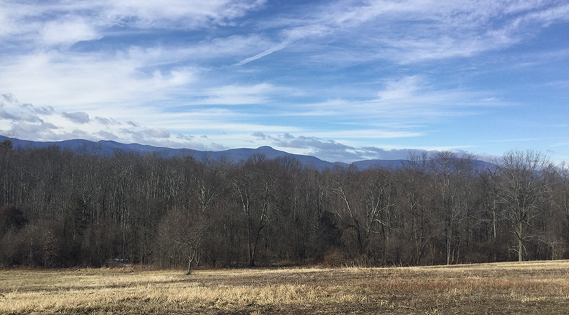 Reed-Catskill-Mtn-view-winter