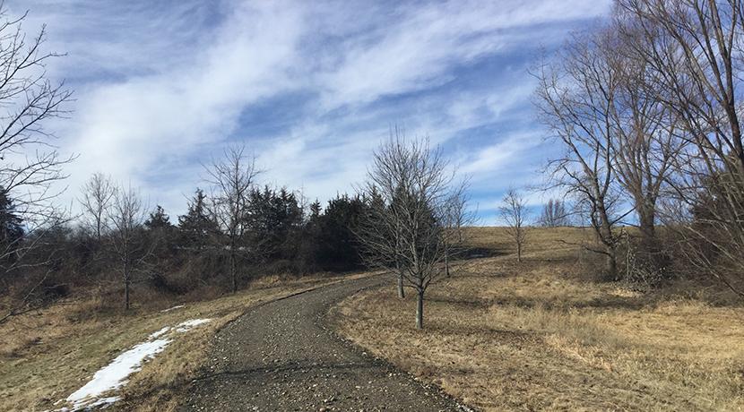 Reed-driveway