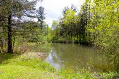Bohnsack-pond