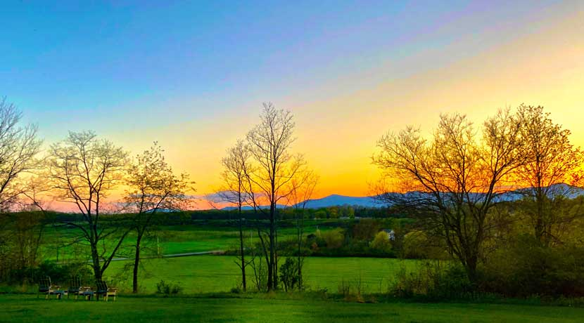 _Scenic-View-2