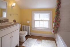 Viewmont-bath-sink