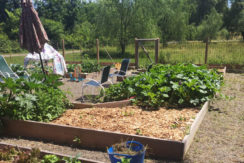 Viewmont-garden
