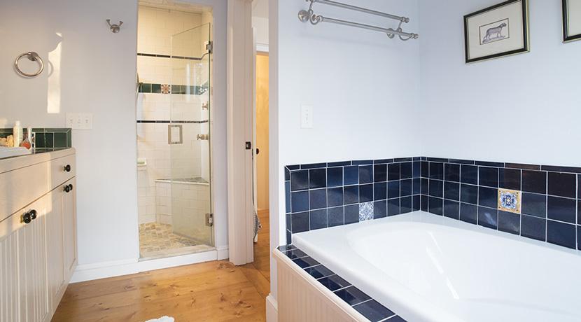 Viewmont-master-suite-bath-shower-tub