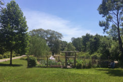 Viewmont-summer-front-lawn