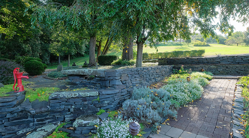 Droege garden area