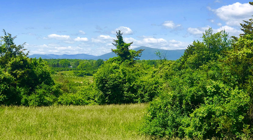 4.5 acres with Catskill Mountain Views