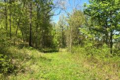 Lent-land-drivewway2