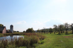 pond_barn_silo_orchard