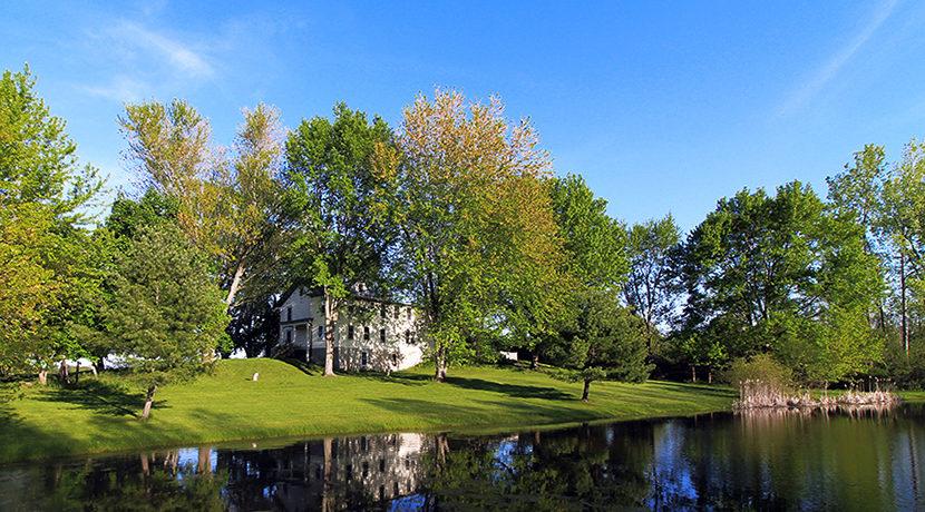 back w pond 2