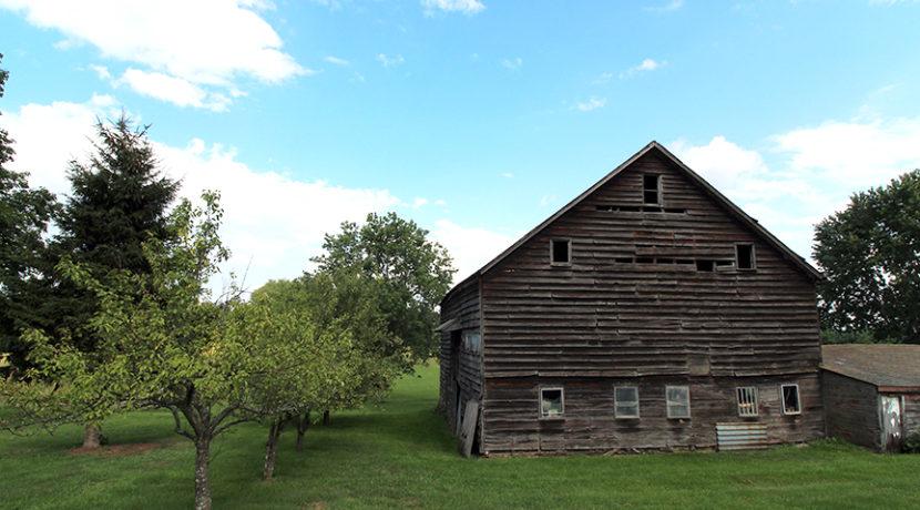 barn & trees 2