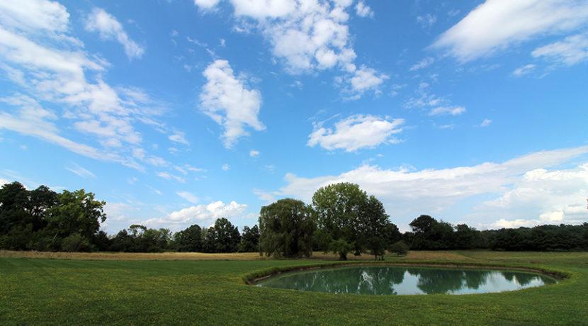 pond & land