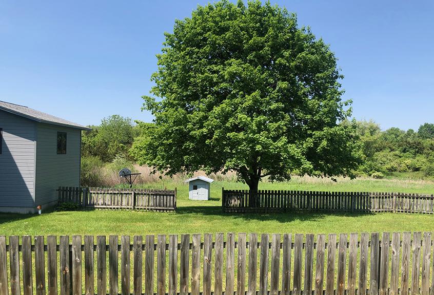 Buhler fenced yard 2021