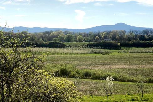 Rosborough Catskill Mtn views