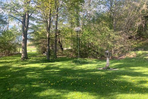 Rosborough Side yard