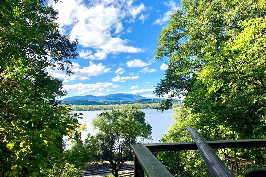 McPadden View