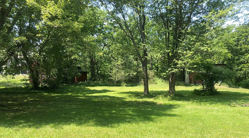 147-149 Maple backyard