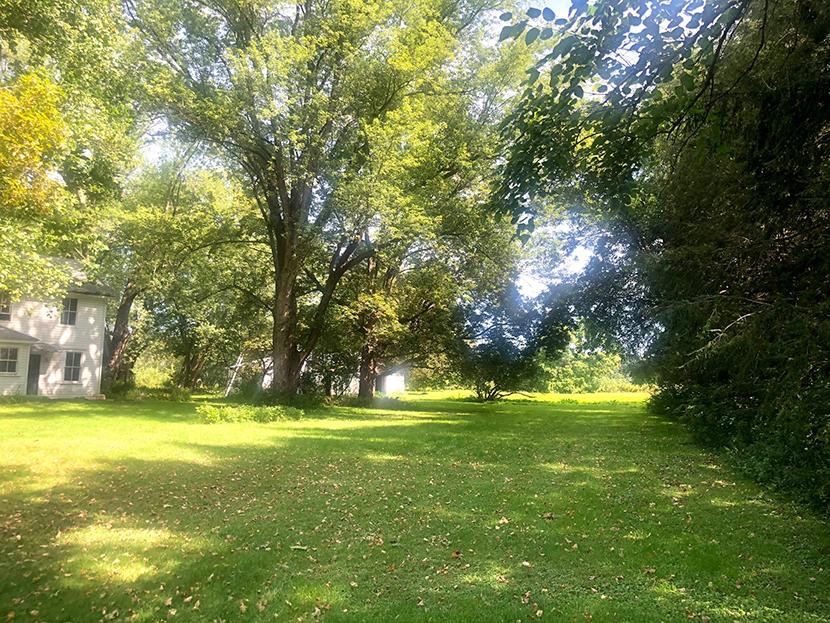 Harte side yard